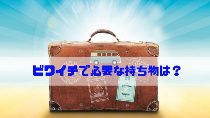 【決定版】ホビーライダーが琵琶湖一周(ビワイチ)に必要な持ち物を紹介!